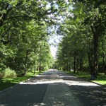 Parque de frente de casa no verão