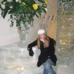 ice hotel (18)