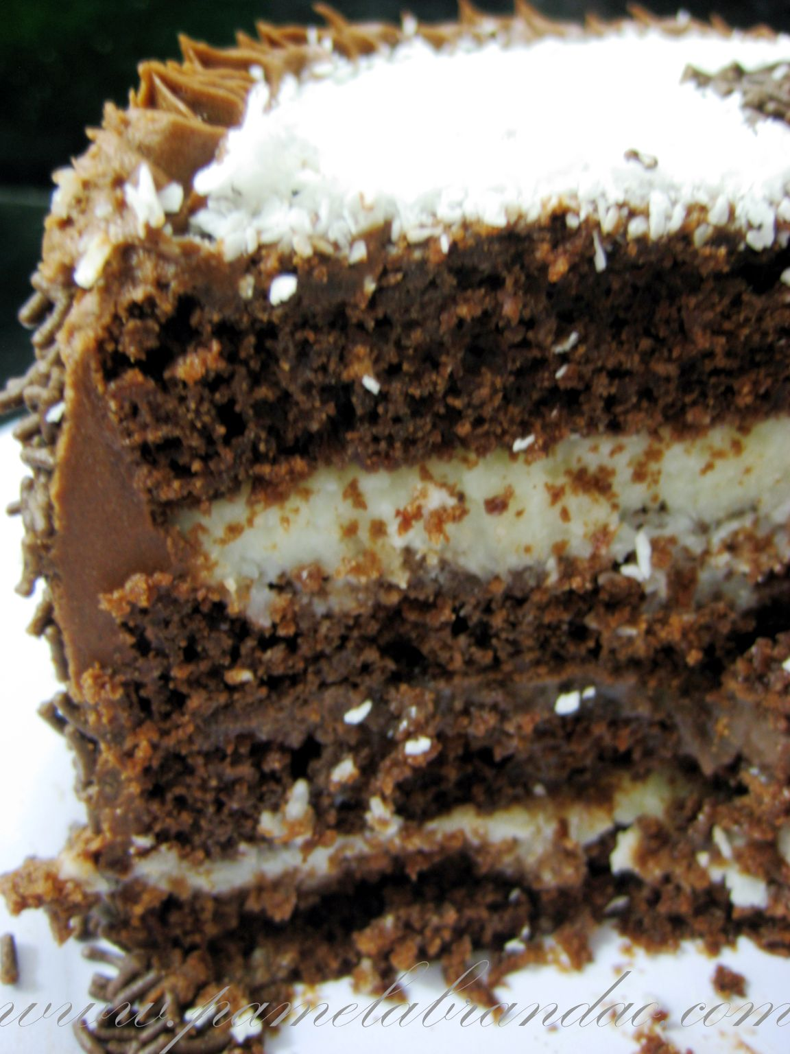 Chocolate Cake with Coconut and Chocolate Filling | Pam*B